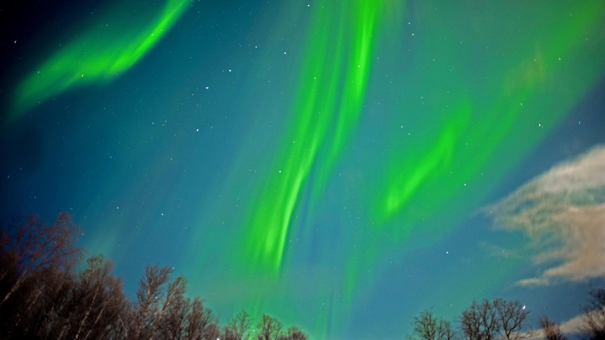 Aurora Borealis. (Alfred Weidinger / Flickr)
