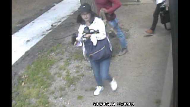 Surveillance footage showed Yingying Zhang standing outside a Champaign-Urbana Mass Transit District bus on the day of her disappearance. (University of Illinois Police Department)