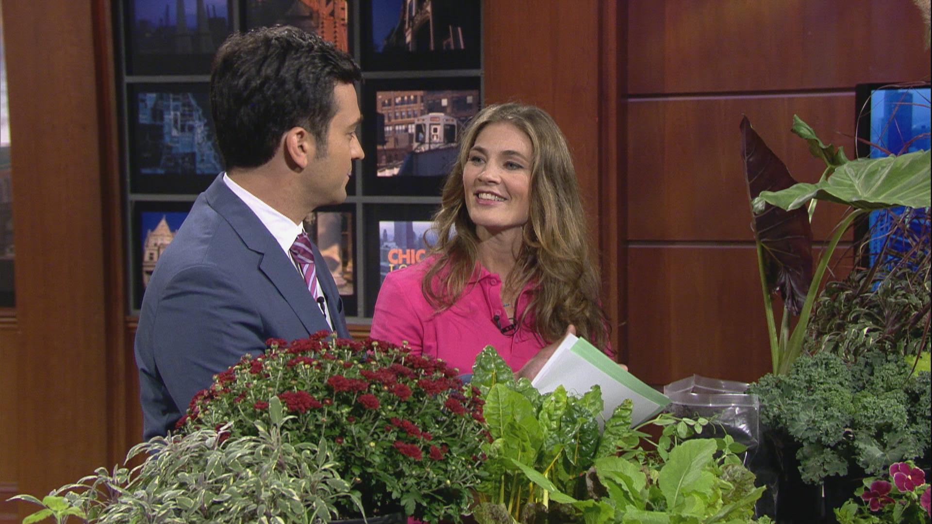 Fall Gardening Tips From Eliza Fournier of the Chicago Botanic Garden