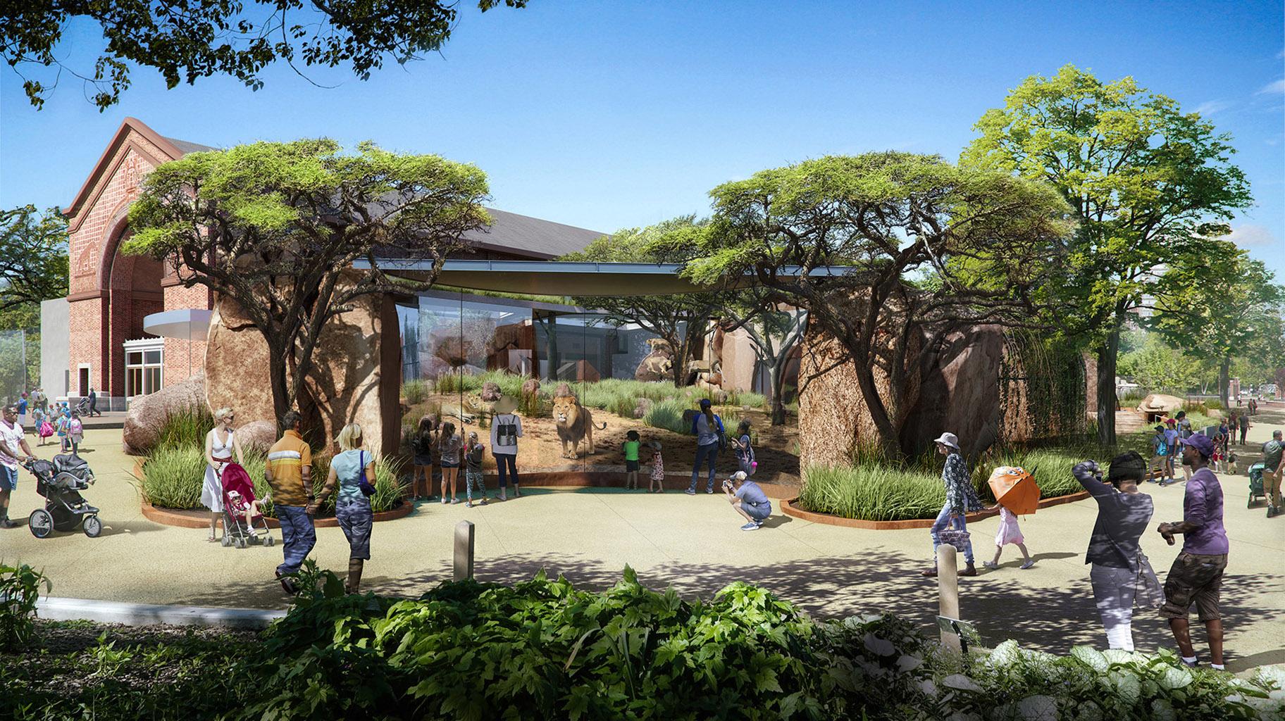 Lincoln Park Zoo Unveils Plans For New 35 Million Lion House Chicago News Wttw