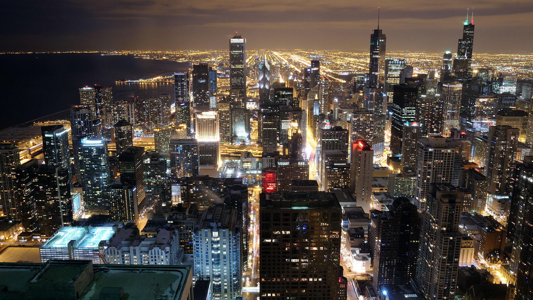 Artificial Light is Changing Animal Behavior in Chicago, Study Finds