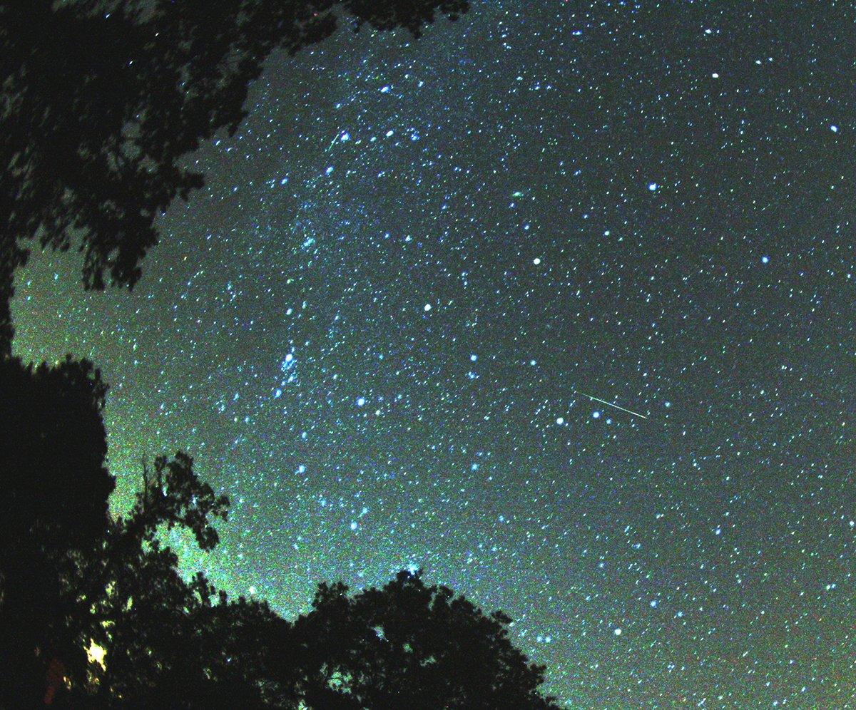 Perseid Meteor Shower A Great Excuse To Stay Up Late