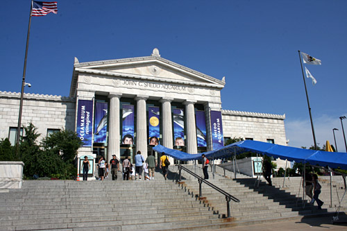 shedd aquarium implements energy conservation plan chicago tonight