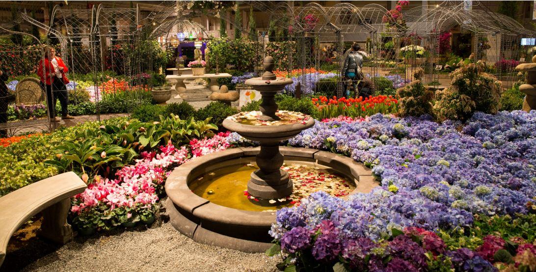 Chicago Flower And Garden Show Computersolutionscrinfo