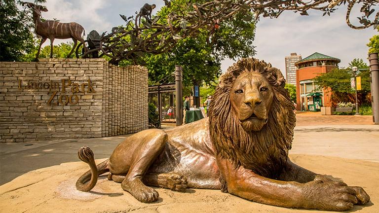 lincoln park zoo announces 125m campaign major exhibit plans
