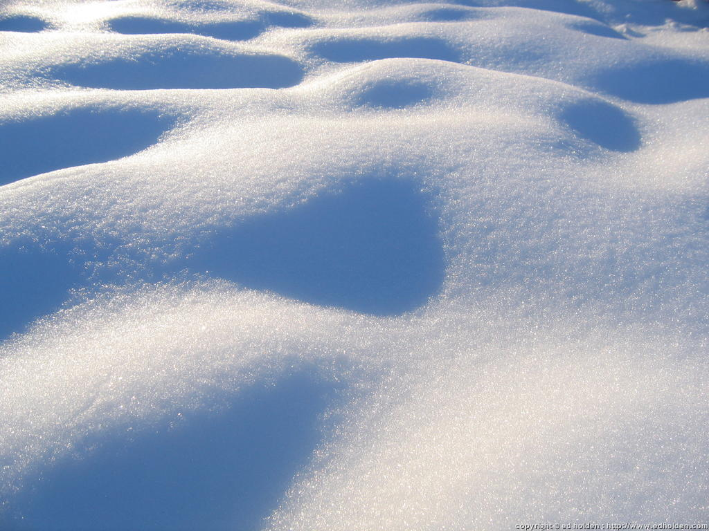heavy snow blankets chicago chicago tonight wttw
