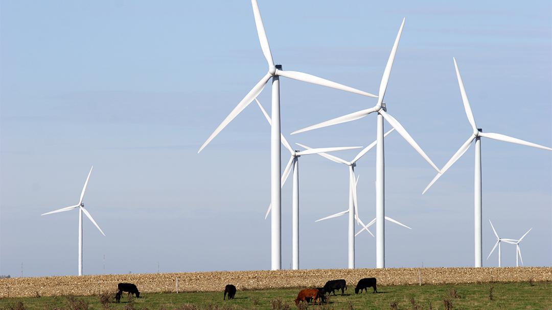 State Rep's Bill Aims to Expand Illinois' Renewable Energy Portfolio