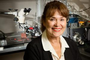 Cell and development biology professor Martha Gillette and her colleagues at Illinois discovered that metabolism influences time-keeping in the brain; Photo by L. Brian Stauffer