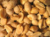 Peanuts, one of the most common food allergens