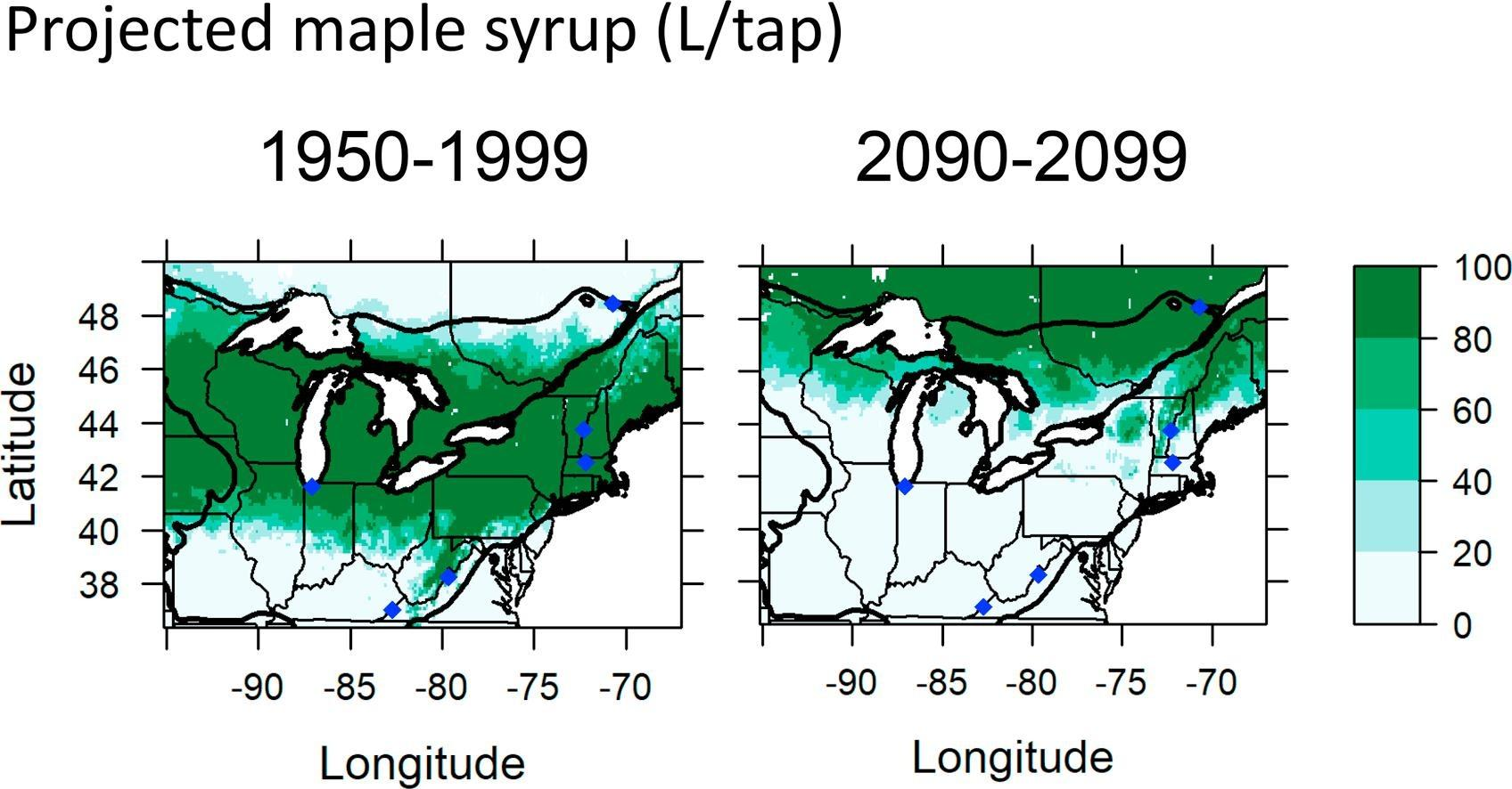 A 2019 study in the journal Forest Ecology and Management shows a steep decrease in maple syrup production for maple trees in the species' southern North American range, including Illinois, by 2100. (Courtesy Joshua Rapp)