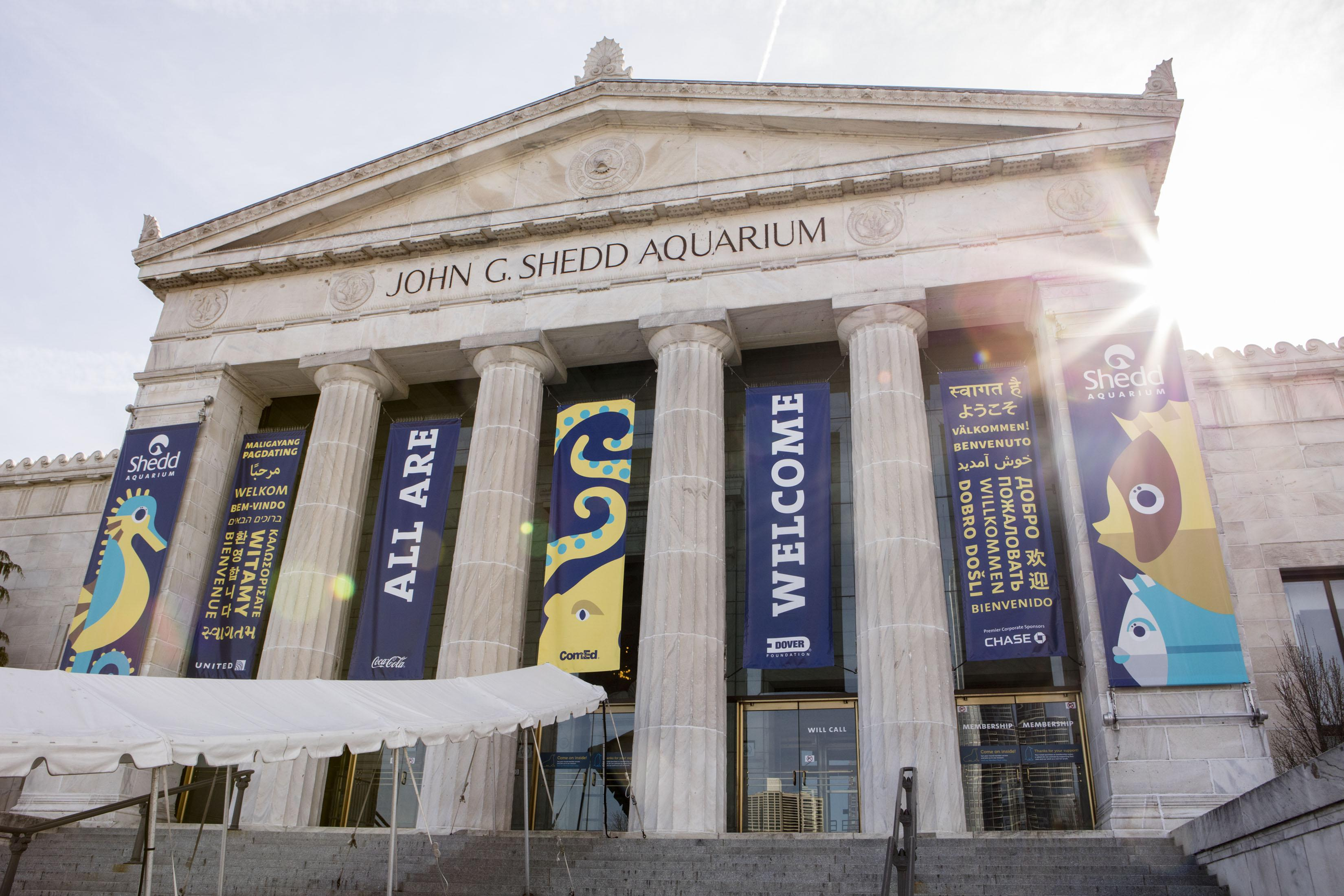 shedd aquarium to replace tiered pricing with flat fee chicago