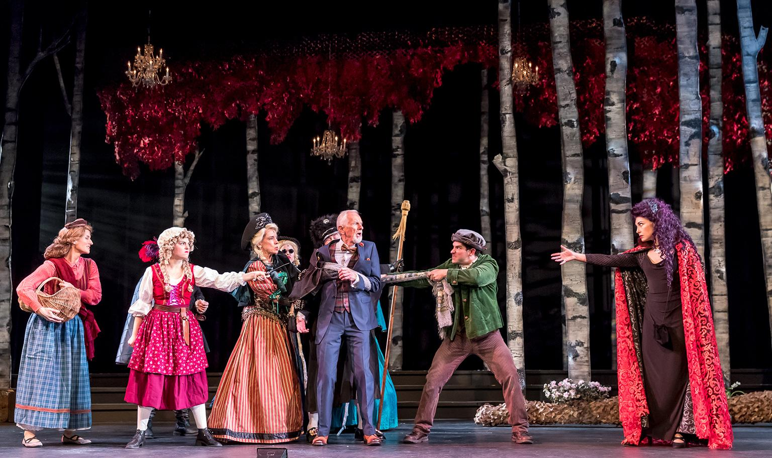 "Cast of Music Theater Works' ""Into the Woods"" at Cahn Auditorium in Evanston. (Photo credit: Brett Beiner)"
