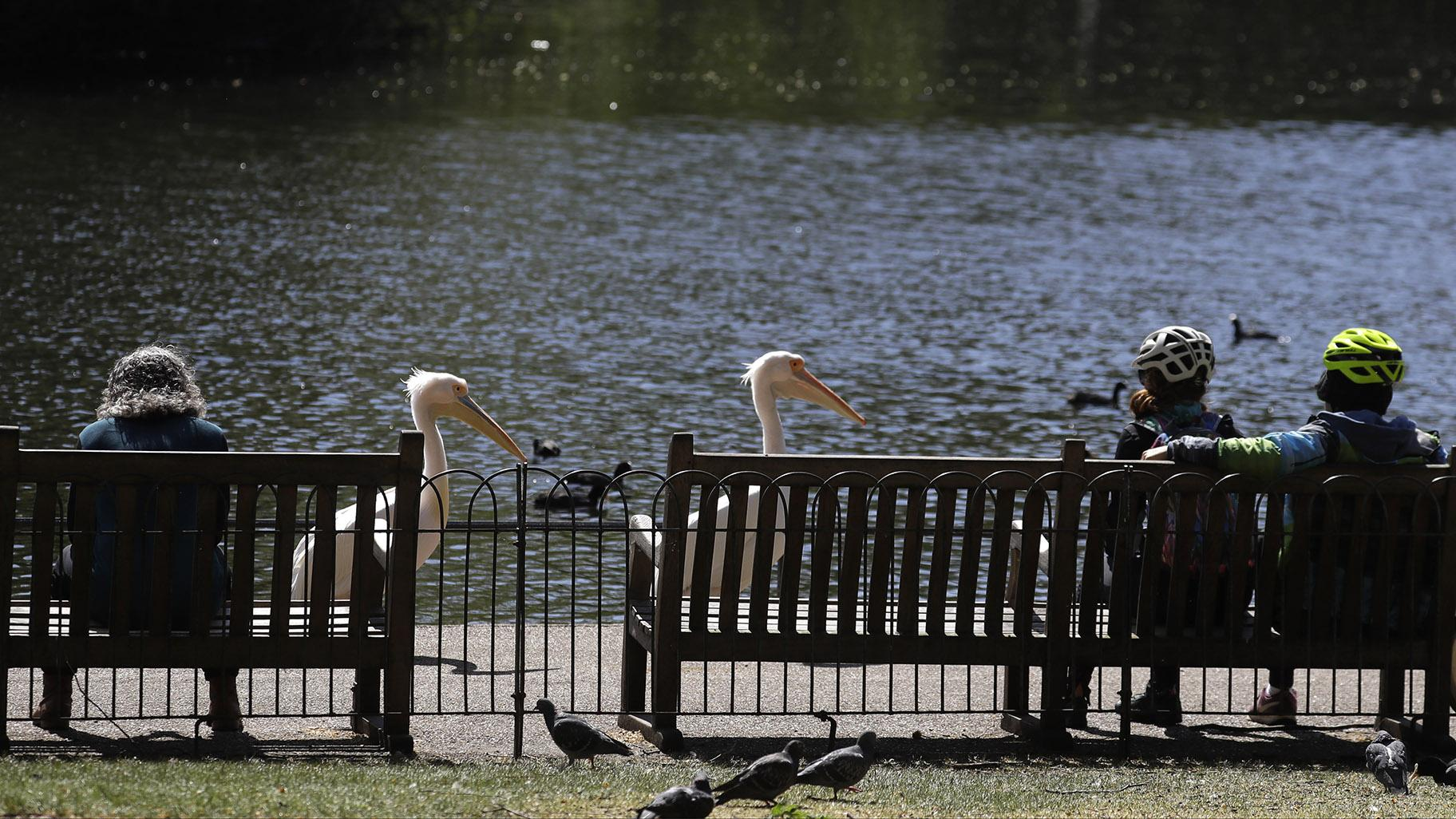 People sit on benches obeying the social distancing in St James's Park in London, as the country continues in lockdown to help curb the spread of the coronavirus, Sunday, April 19, 2020. (AP Photo / Kirsty Wigglesworth)