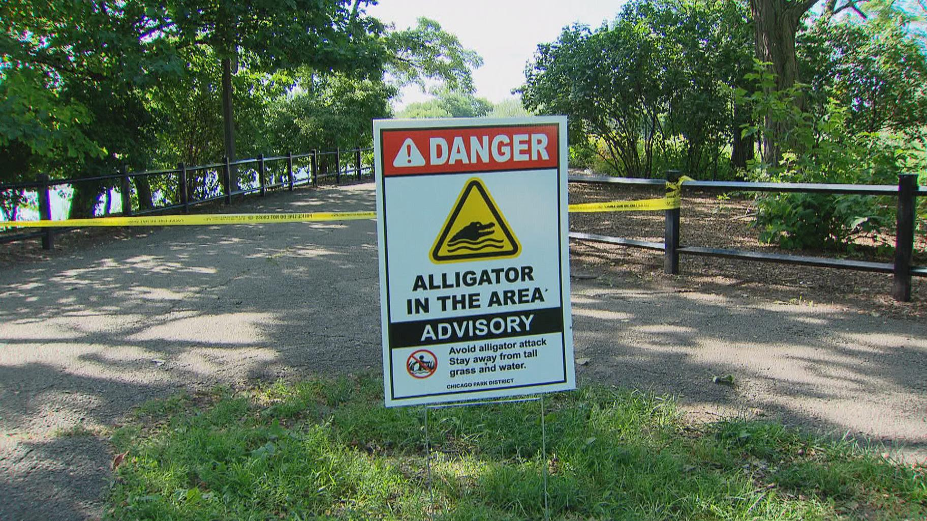 A sign at Humboldt Park warns visitors about the alligator discovered in the park's lagoon. (WTTW News)