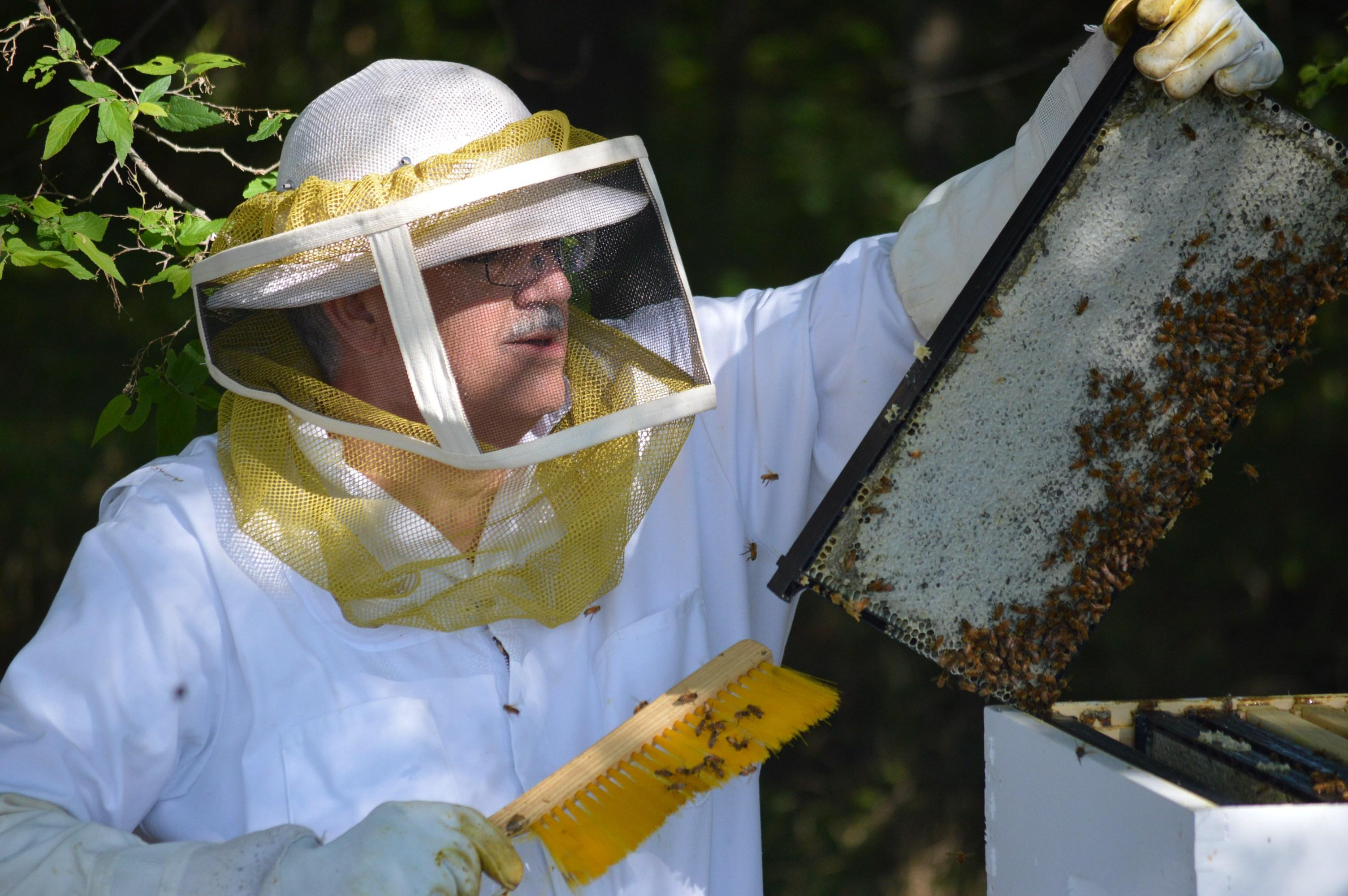 Beekeeper Steve House (Courtesy Midwest Master Beekeeper Program)