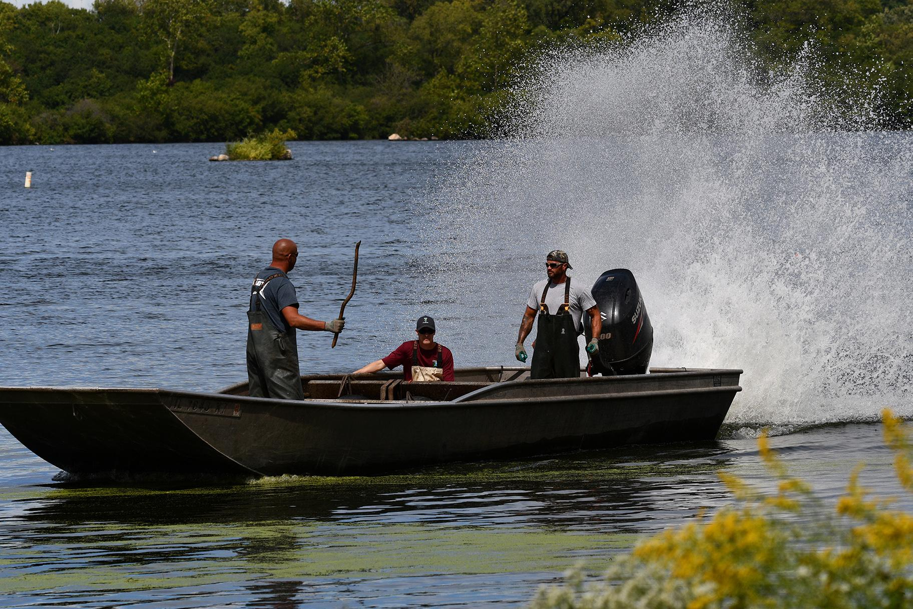 Crews with the Illinois Department of Natural Resources harvest Asian carp at the Rock Run Rookery Preserve in Joliet. (Chad Merda / Forest Preserve District of Will County)