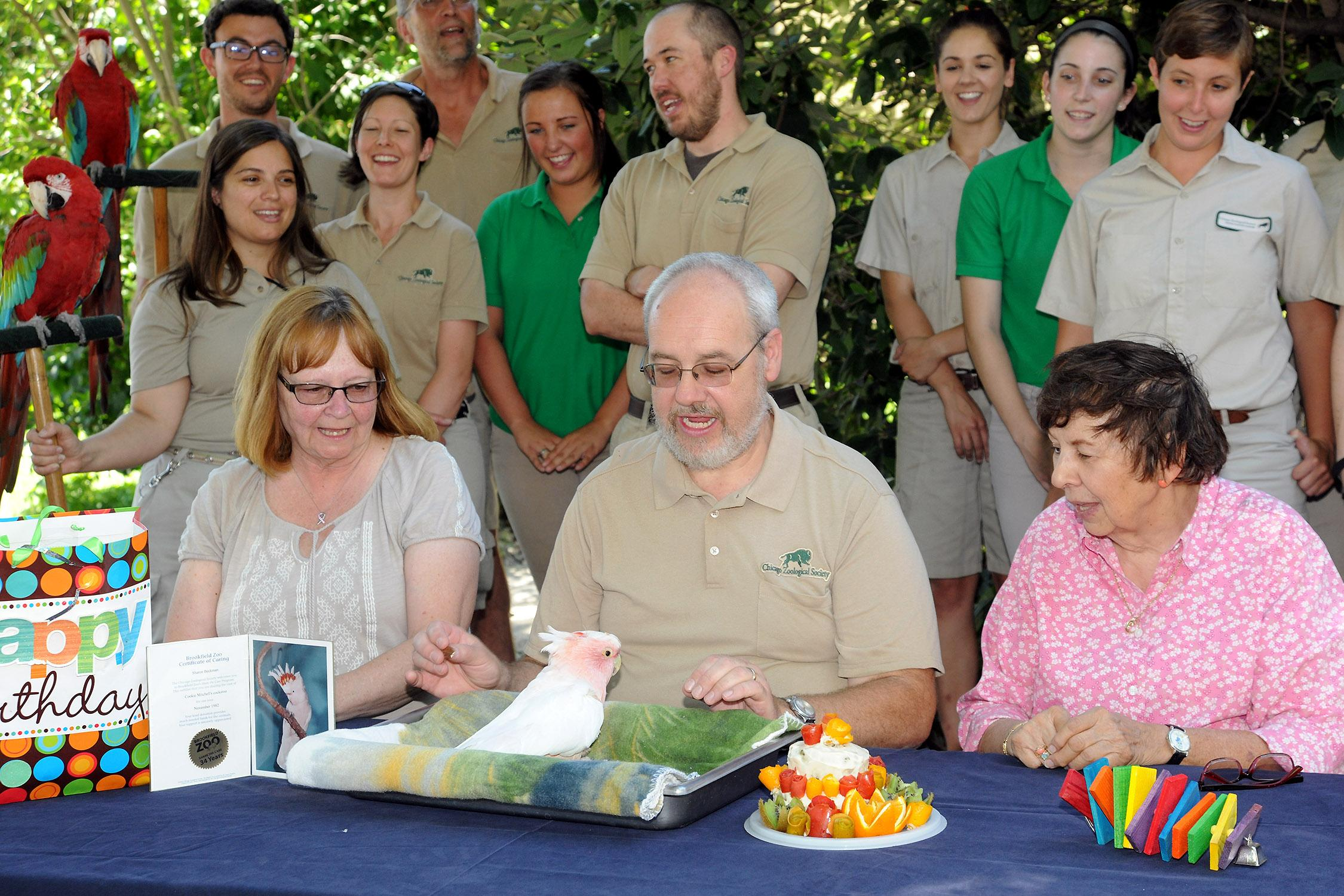 Brookfield Zoo staff celebrate Cookie's 83rd birthday in 2016. (Courtesy Chicago Zoological Society)