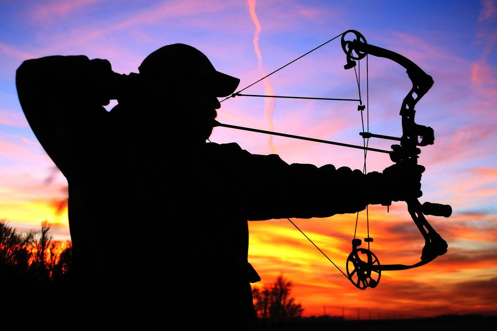 Crossbow Hunting Allowed in Illinois Under New Law | Chicago