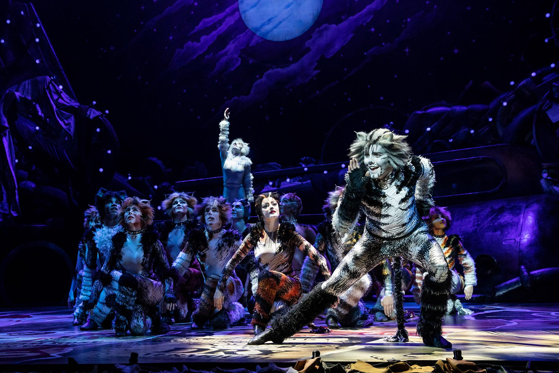 "Dan Hoy as Munkustrap and the North American Tour of ""Cats."" (Photo by Matthew Murphy)"