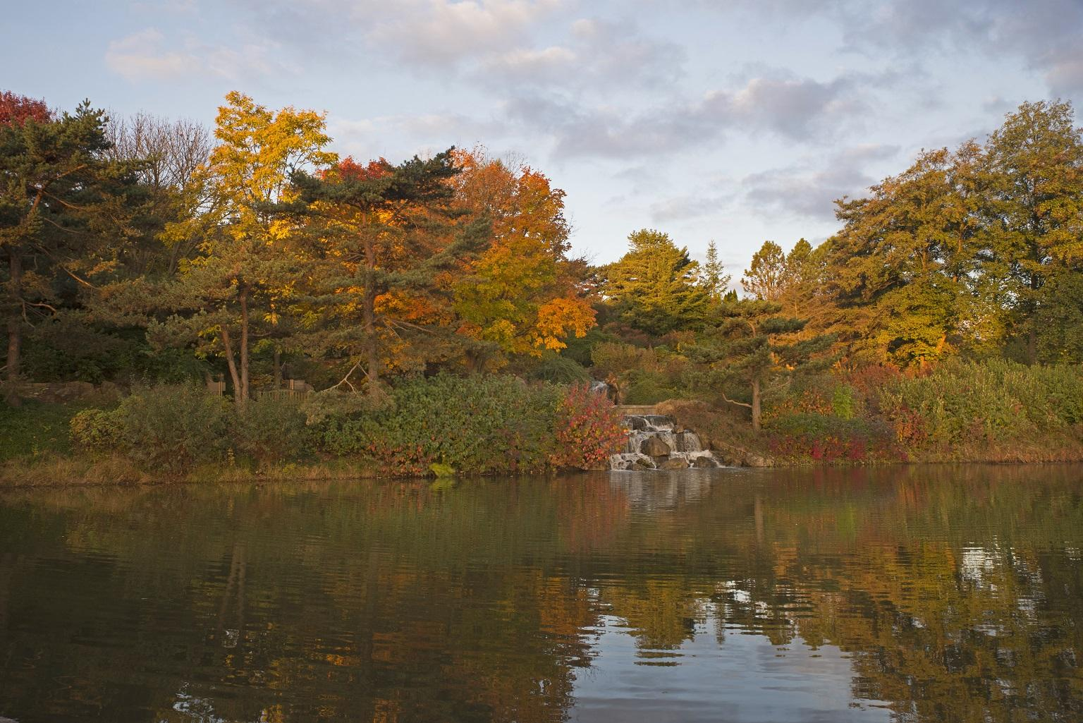 Fall at Chicago Botanic Garden's Waterfall Garden (Courtesy Chicago Botanic Garden)