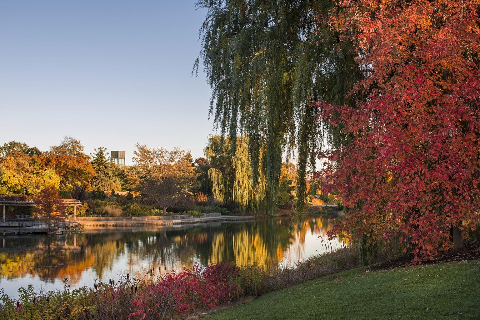The Bulb Garden this fall at the Chicago Botanic Garden in Glencoe (Courtesy Chicago Botanic Garden)