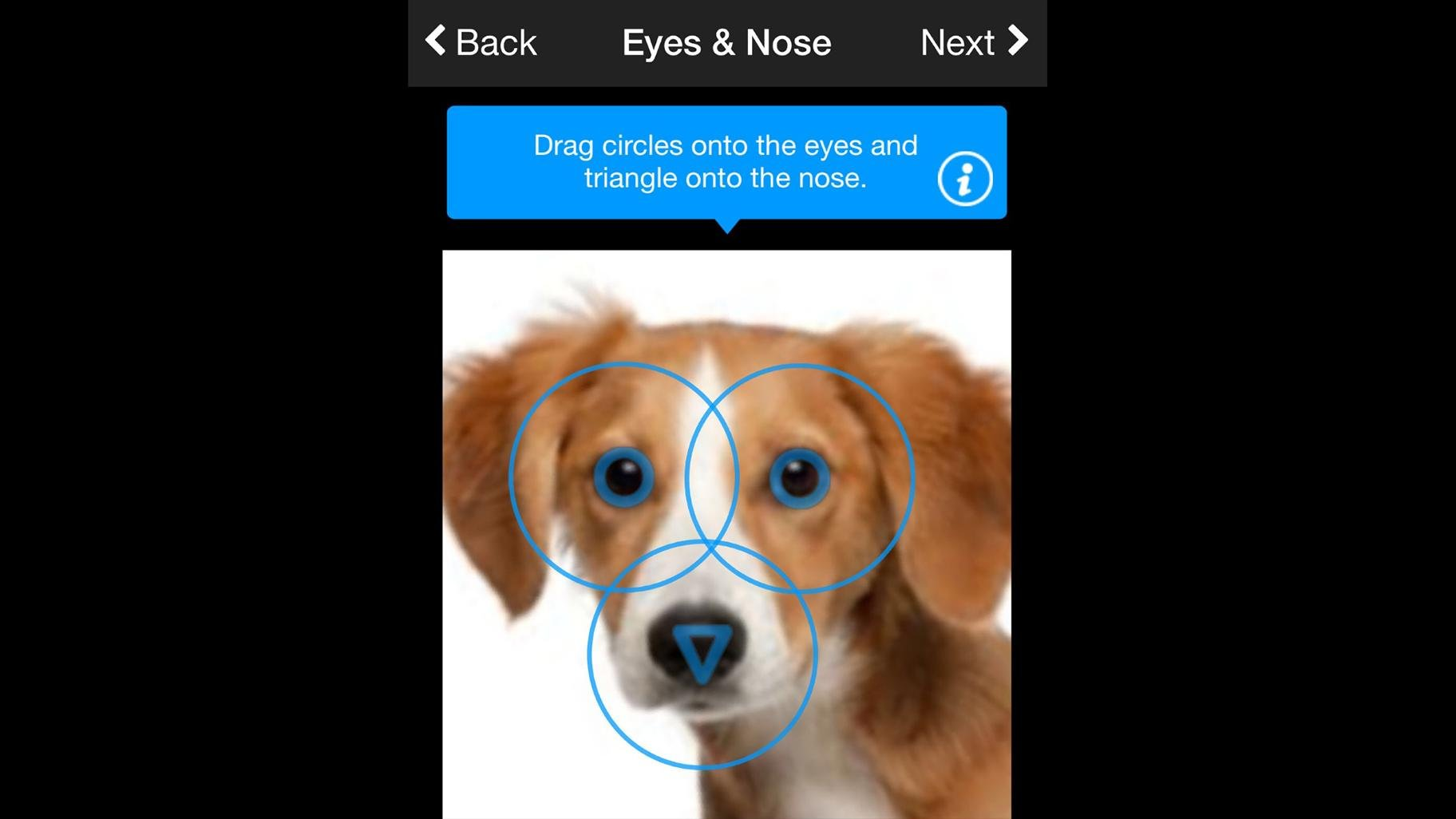 Finding Rover CEO John Polimeno said the app recognizes faces of animals with 98 percent accuracy. (Courtesy Finding Rover)