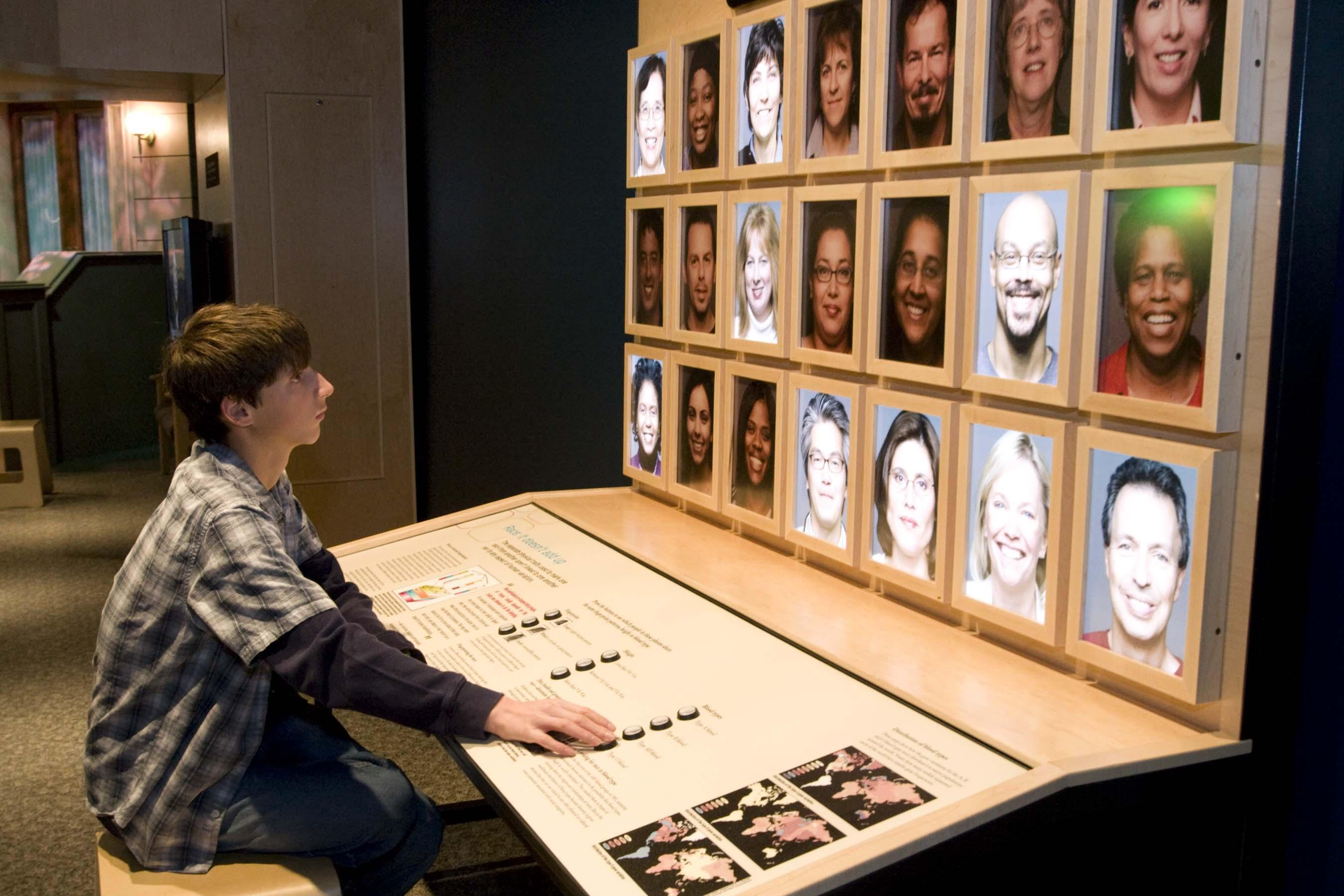 An interactive game about the traits people share yields surprising results that challenge visitors to reconsider the ways in which they categorize people. (Courtesy of the American Anthropological Association and Science Museum of Minnesota)