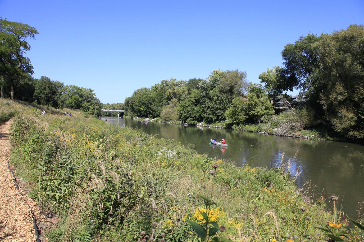 The North Branch of the Chicago River near Montrose Avenue in Horner Park. (Courtesy U.S. Army Corps of Engineers)