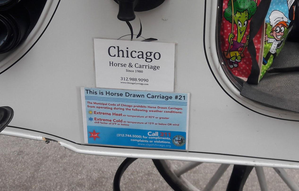 Chicago prohibits horse-drawn carriages from operating when the temperature rises to 90 degrees or drops to 15 degrees. (Courtesy Chicago Alliance for Animals)