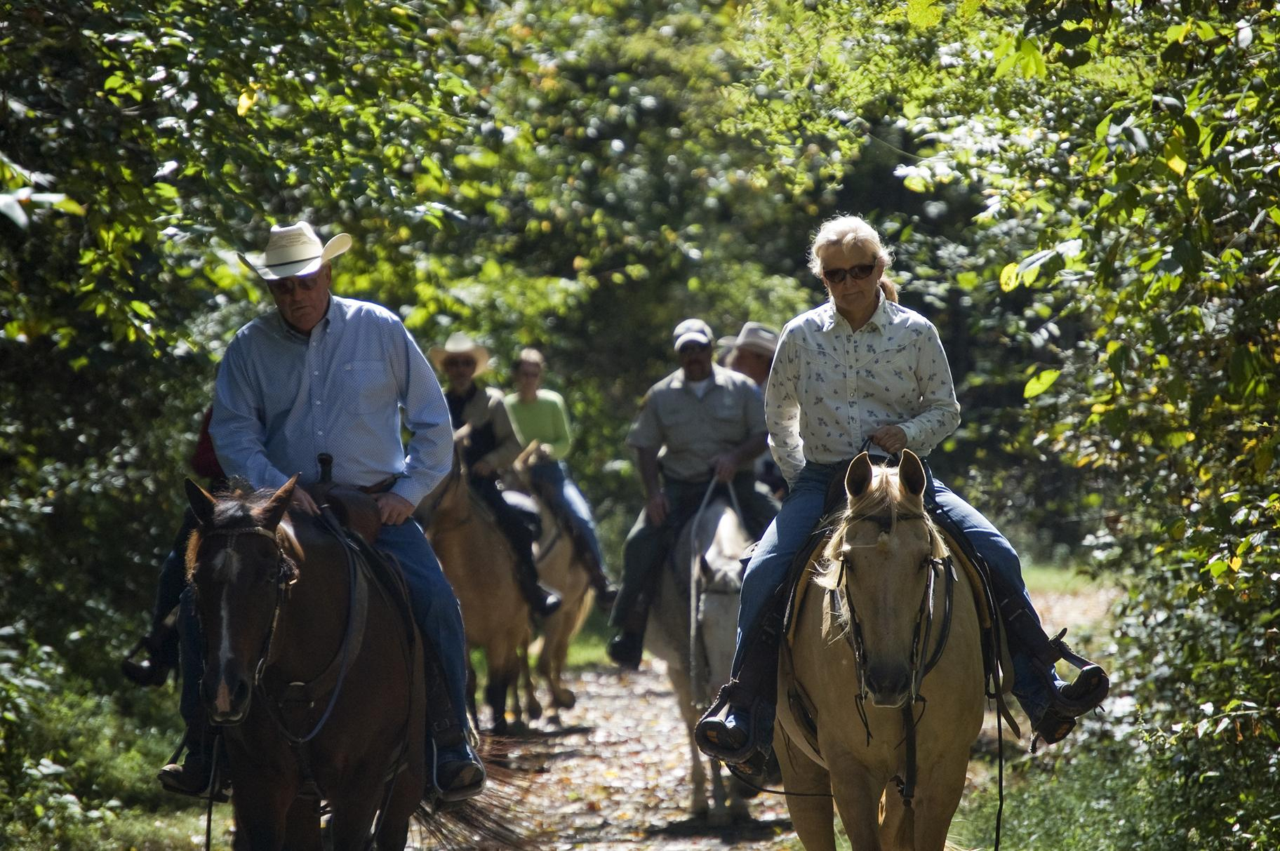 Horseback riding at New River Trail State Park in Virginia (Virginia State Parks / Wikimedia Commons)
