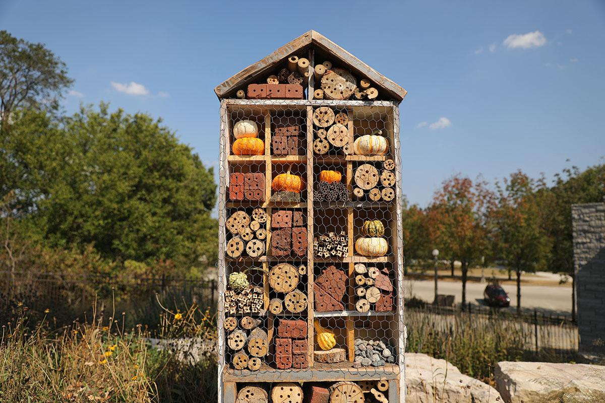 Lincoln Park Zoo S Insect Hotel Is Filled With Diffe Materials That Support Various Local Species