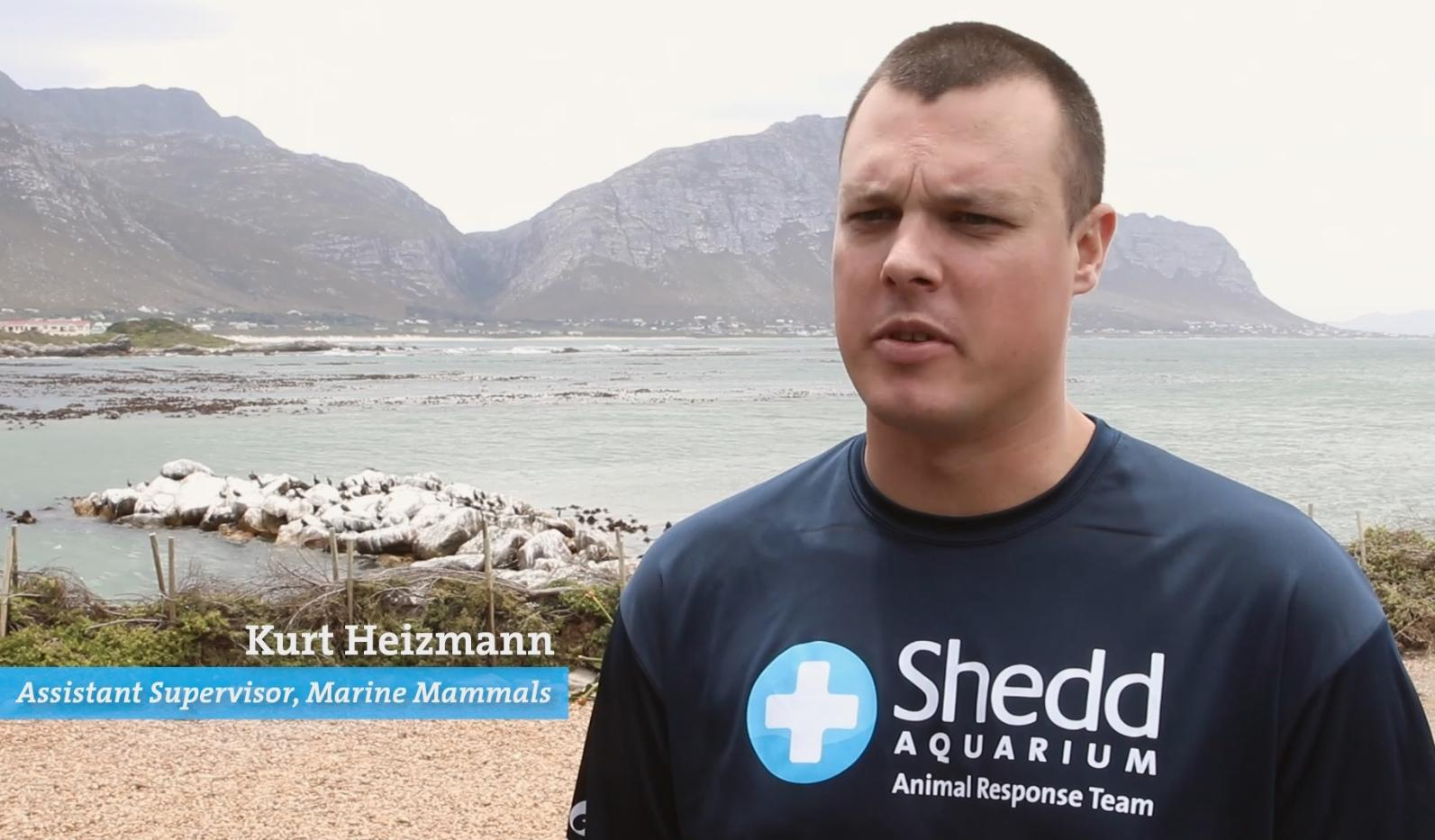 Kurt Heizmann of Shedd Aquarium's Animal Response Team (Shedd Aquarium)