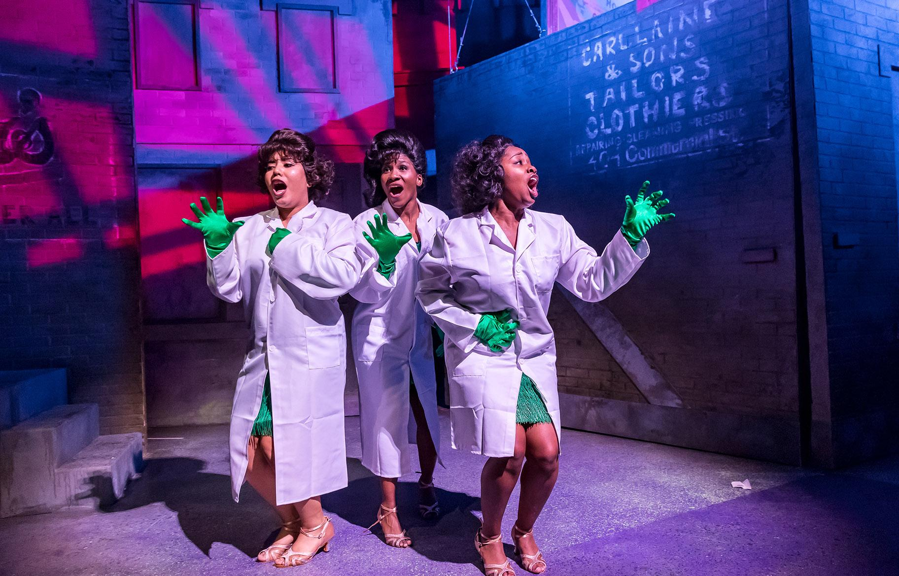 Little Shop' Grows Deep Roots at Mercury Theater   Chicago
