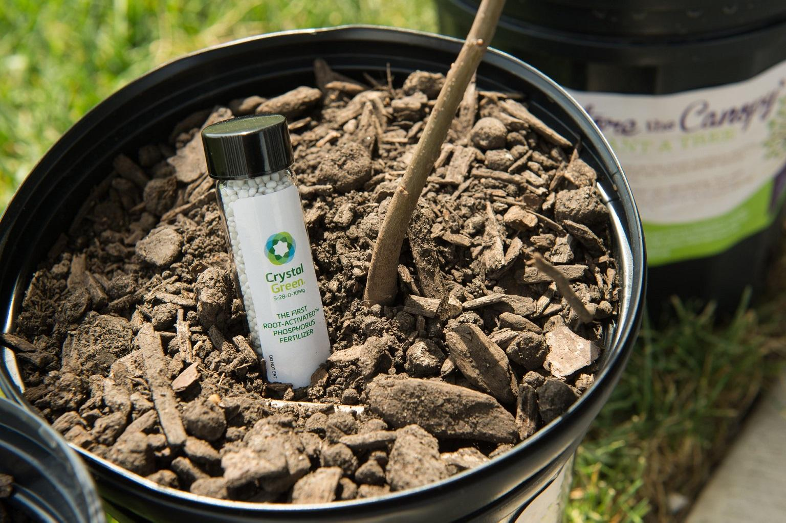 MWRD has created compost products that are planted with oak tree saplings, which help soak up stormwater. (Courtesy Metropolitan Water Reclamation District of Greater Chicago)