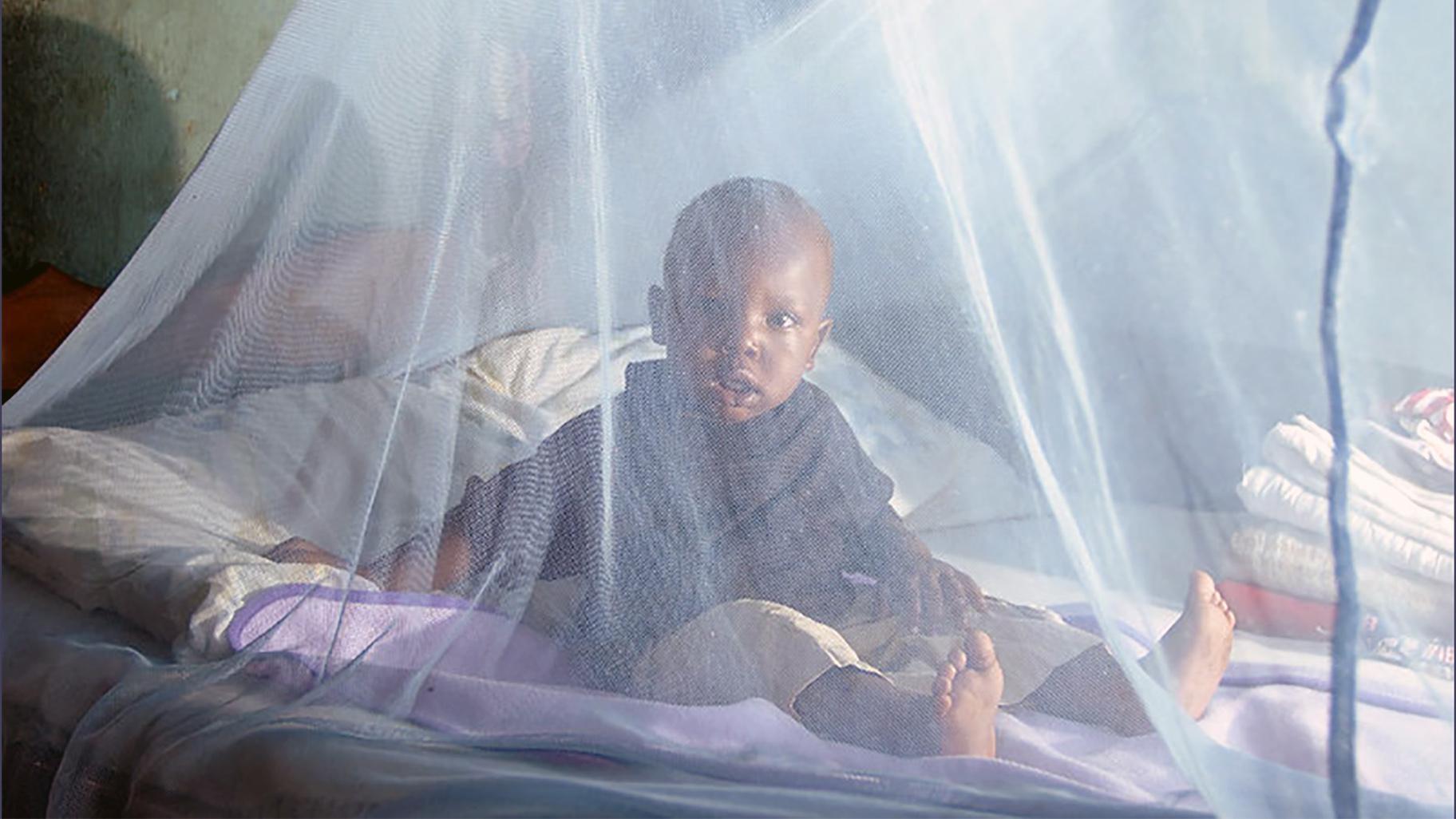 Москитная сетка, используемая для защиты от малярии в Кении (любезно предоставлено Томасом Омонди / Департамент международного развития Великобритании)