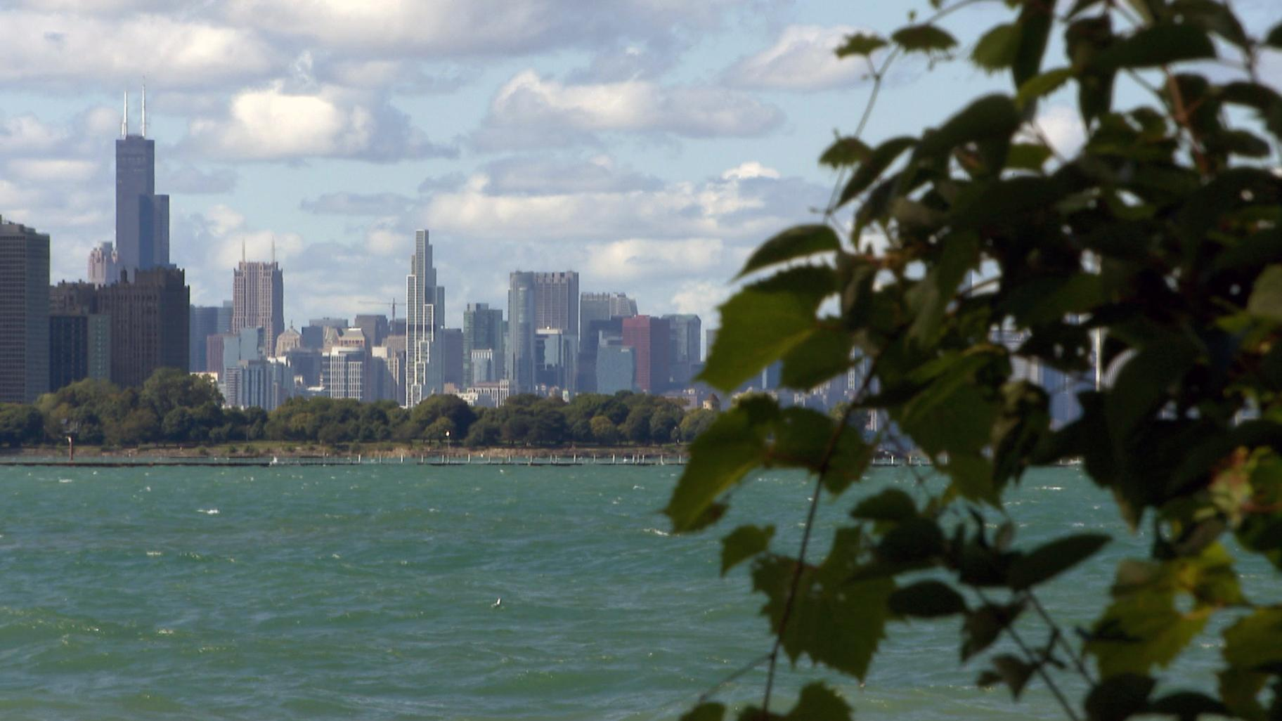 A view of Chicago's skyline from the South Shore Nature Sanctuary.