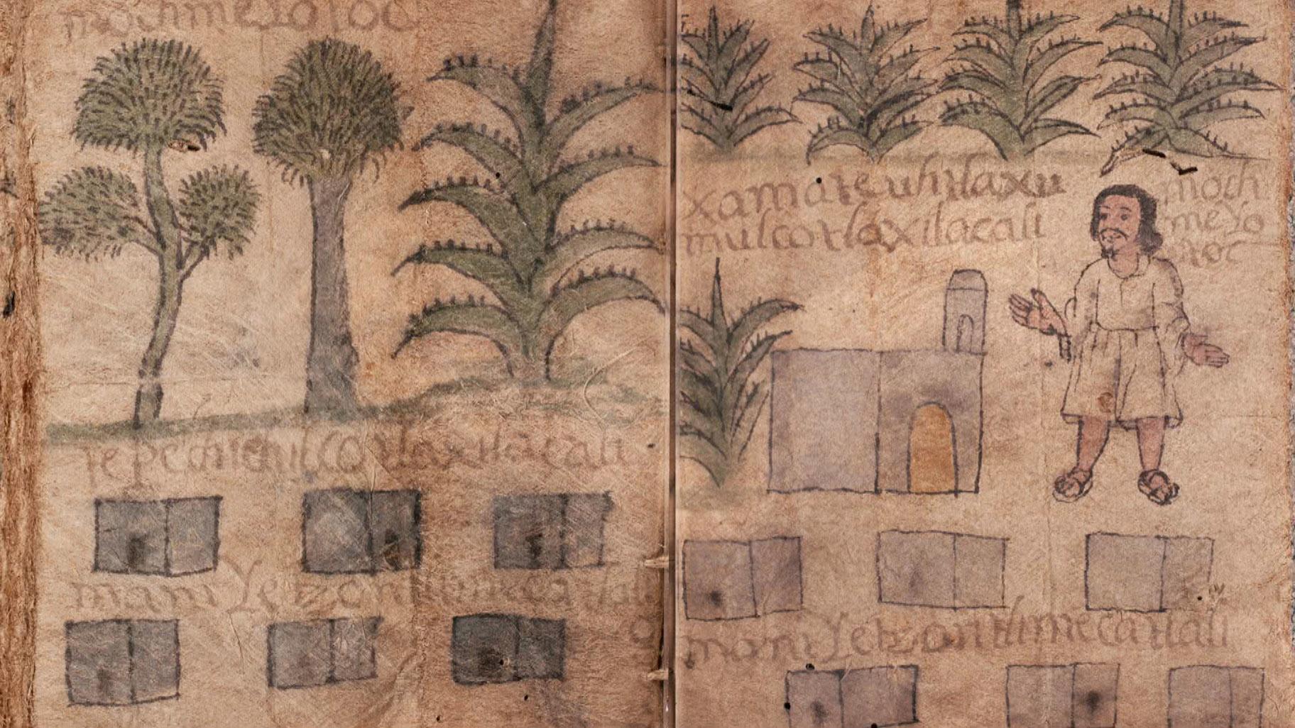 La exposición presenta artefactos y objetos de los pueblos indígenas de estos países, incluido el Codex Gembola.  (Noticias de WTTW)