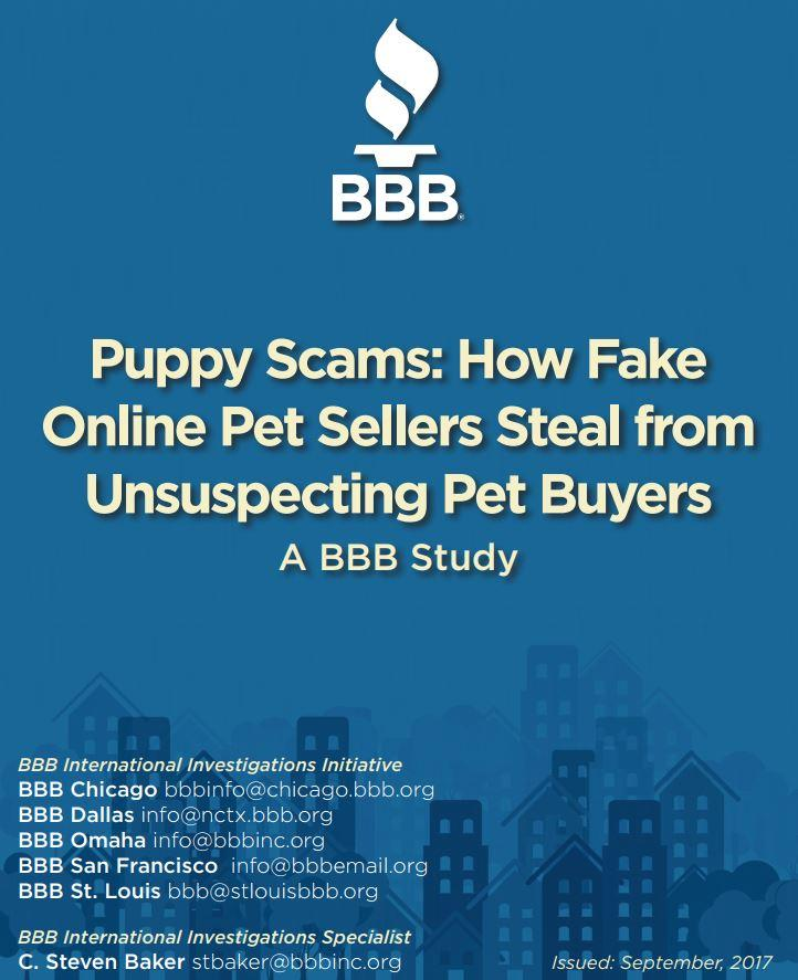 "Document: ""Puppy Scams: How Fake Online Pet Sellers Steal from Unsuspecting Pet Buyers"" (Better Business Bureau)"