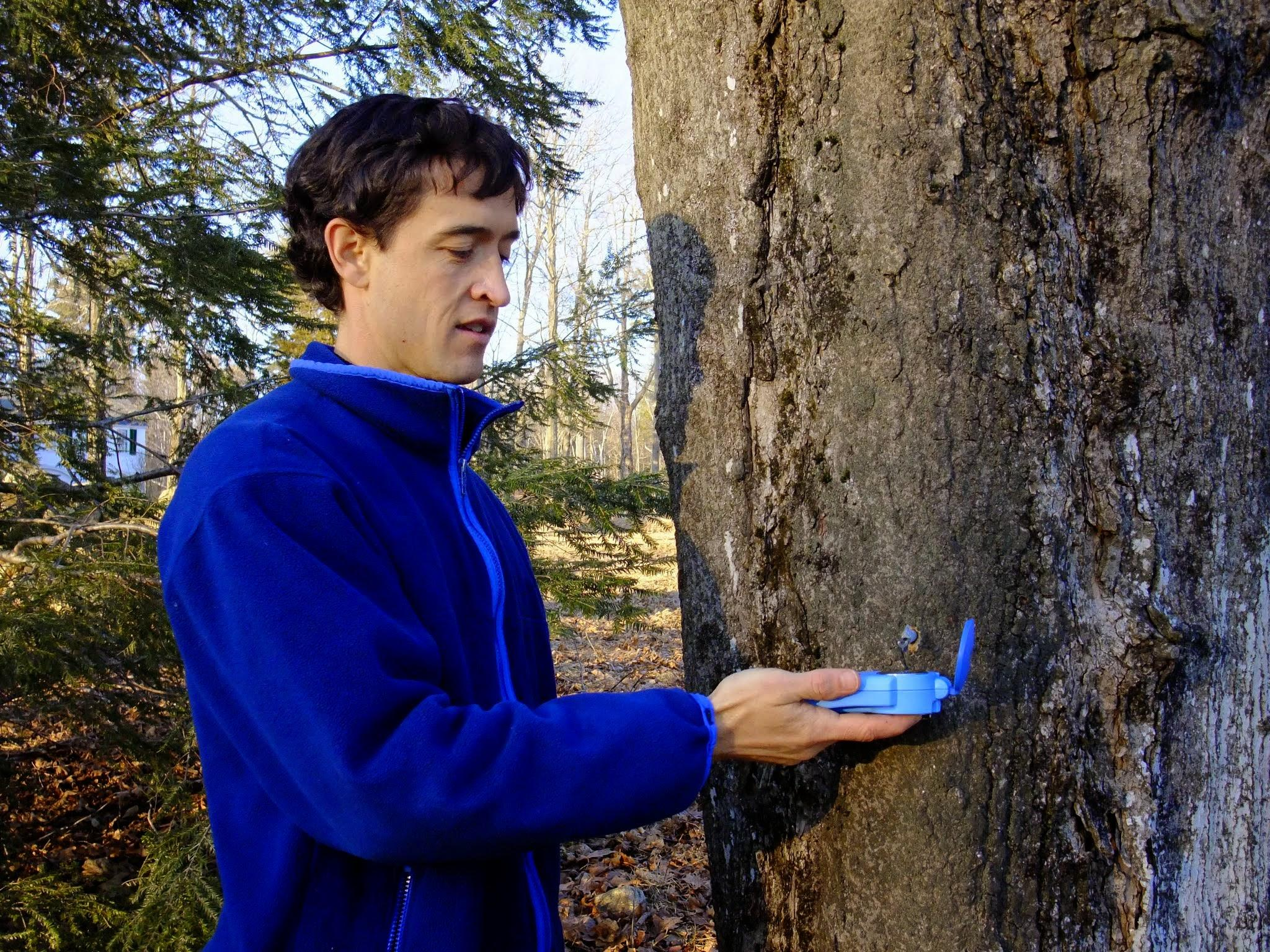5b296c92767 Ecologist Joshua Rapp measuring the sugar content of sap from a sugar maple  tree in north-central Massachusetts. (Clarisse Hart)