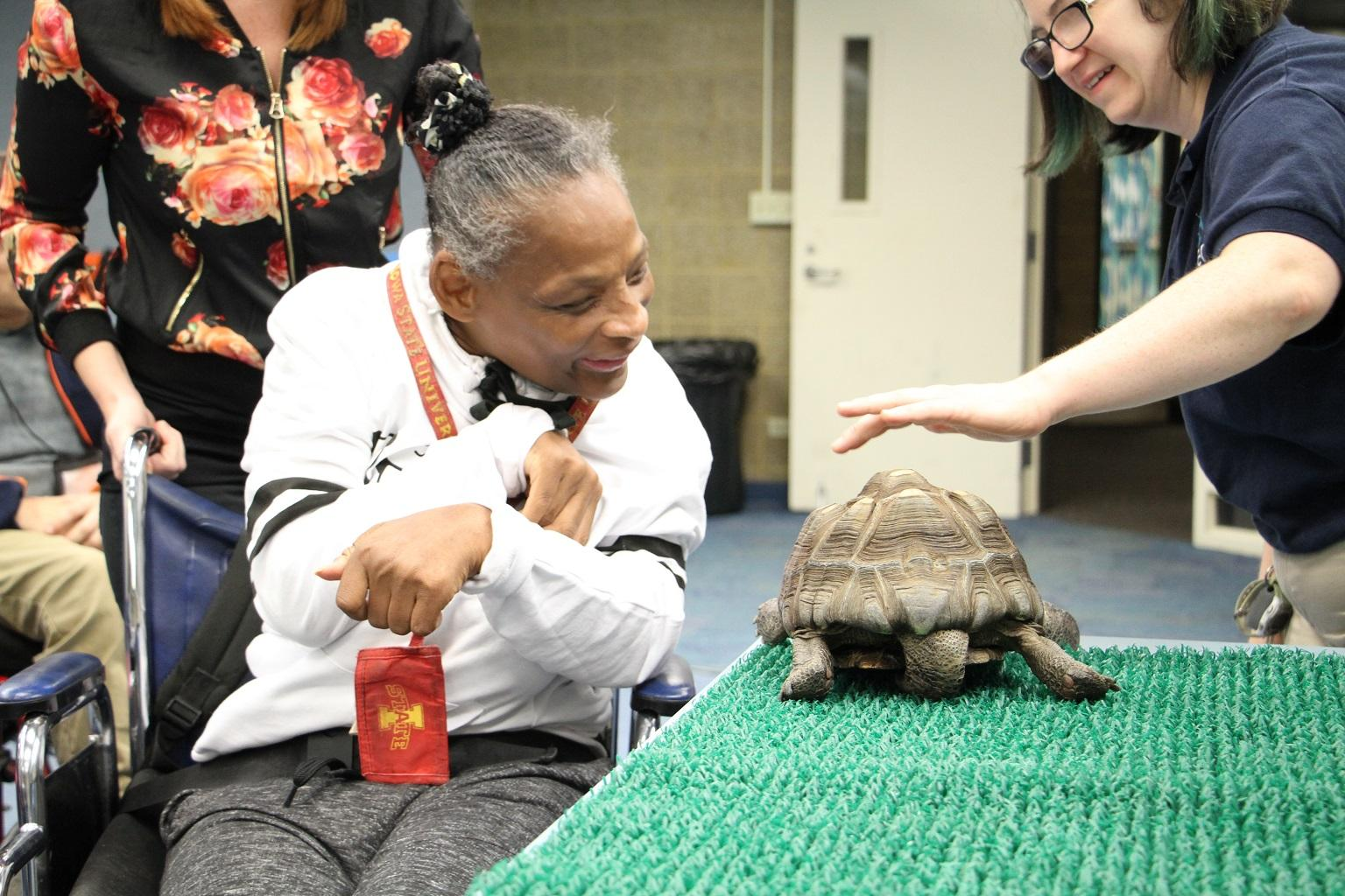 A member of the Envision Unlimited Rose Center, a program for people with intellectual and developmental disabilities, comes face-to-face with a tortoise at Shedd Aquarium. (Em Hall / Envision Unlimited)