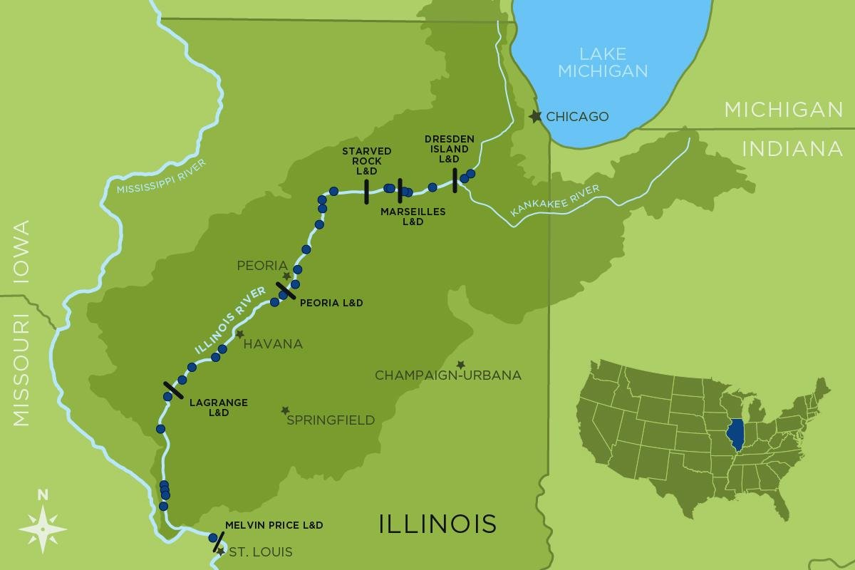 In 1957, scientists set up a series of fish-monitoring stations in the Illinois River. Eventually, stations were added so that sampling extended from near Chicago all the way downstream to the Mississippi River. (Map by Danielle Ruffatto / Illinois Natural History Survey)