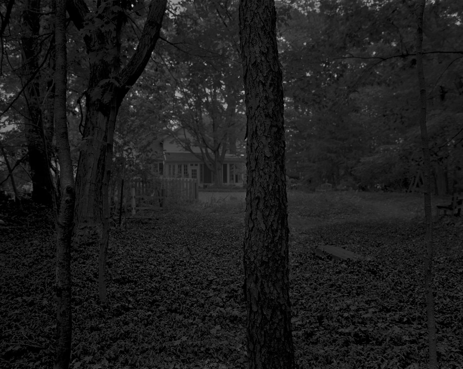 "Dawoud Bey. ""Untitled #2 (Trees and Farmhouse),"" from the series ""Night Coming Tenderly, Black,"" 2017. Rennie Collection, Vancouver. © Dawoud Bey."