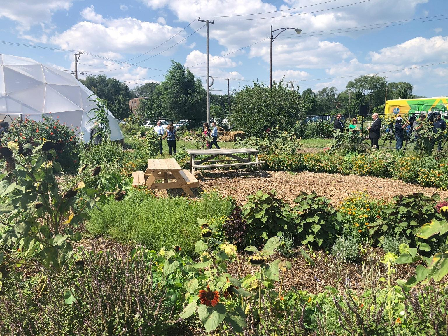 Urban Growers Collective's farm in South Chicago, near the former U.S. Steel site (Alex Ruppenthal / Chicago Tonight)