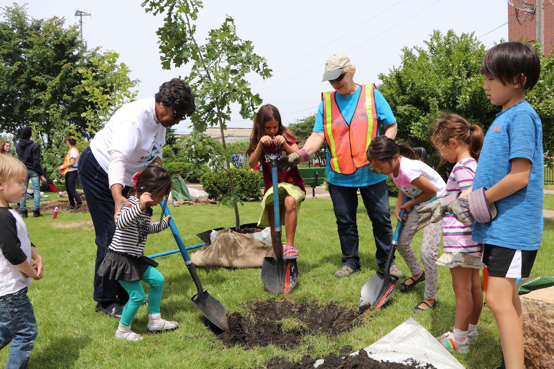 Volunteers plant trees following the performance by Grammy-winning musician Yo-Yo Ma. (Evan Garcia / WTTW)
