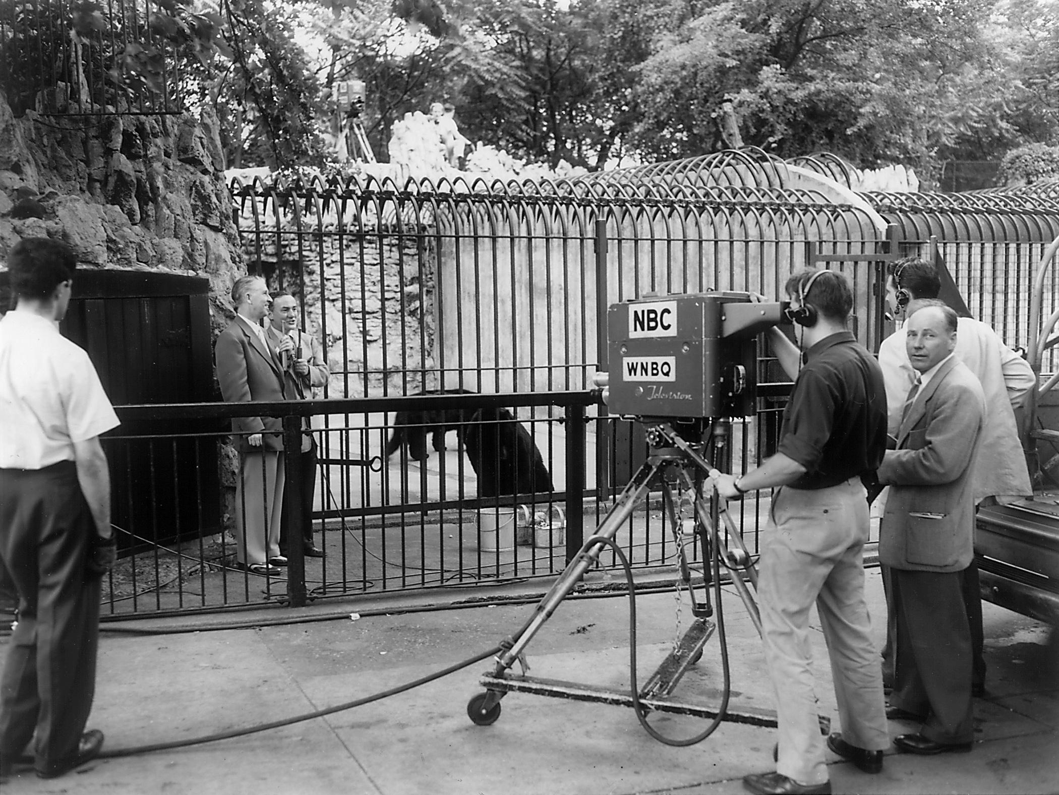 """Zoo Parade"" filming in the 1950s: Lincoln Park Zoo Director Marlin Perkins brings wildlife into households with his TV program, ""Zoo Parade,"" headquartered at Lincoln Park Zoo. (Courtesy Chicago Park District and Chicago History Museum)"