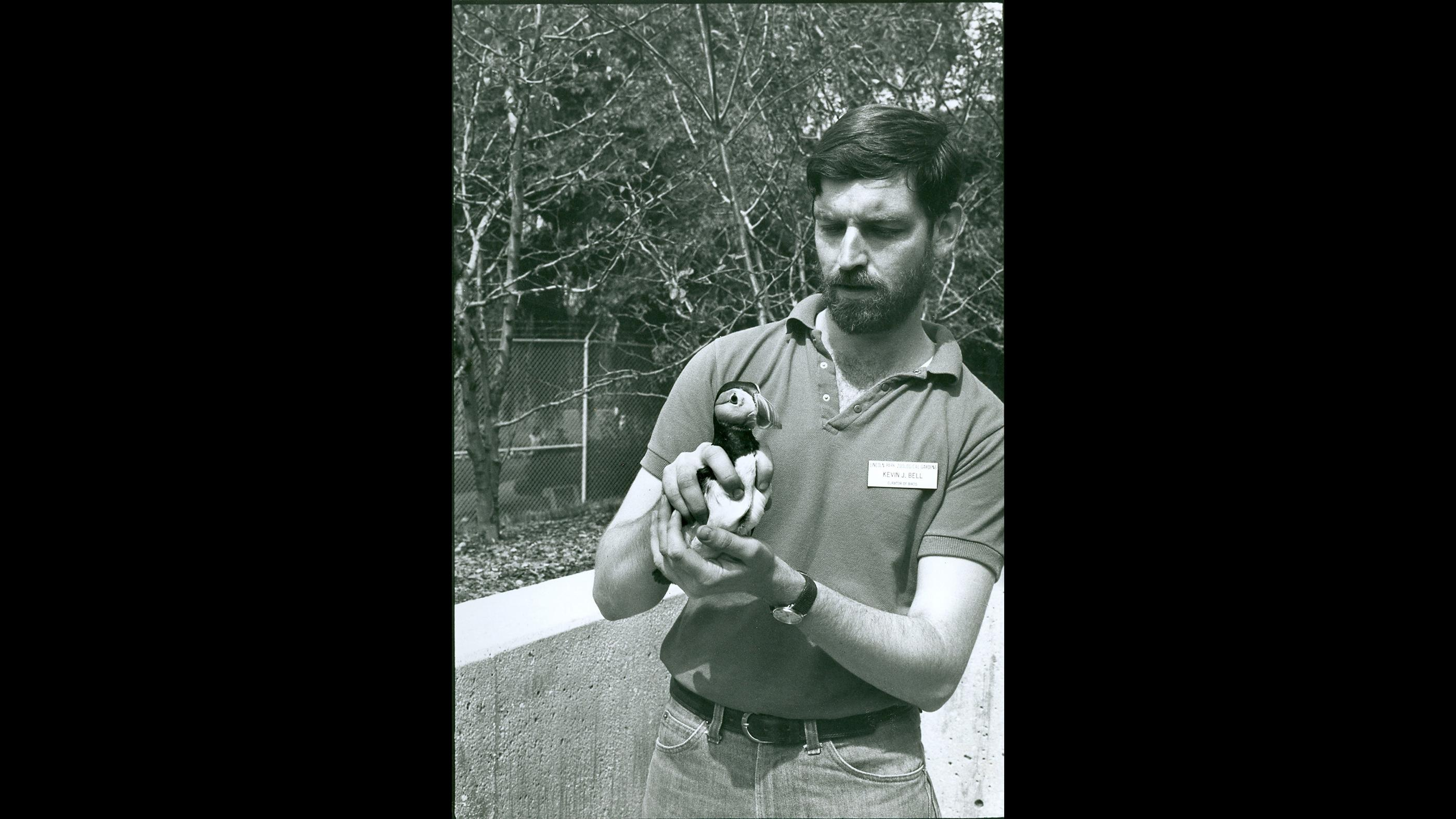Current Lincoln Park Zoo President and CEO Kevin Bell shown here in 1981, when he was the zoo's curator of birds. (Courtesy Chicago Park District and Chicago History Museum)