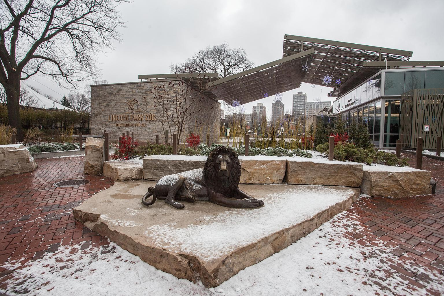 The Adelor lion statue sites outside of Lincoln Park Zoo's new Searle Visitor Center. (Courtesy Lincoln Park Zoo)