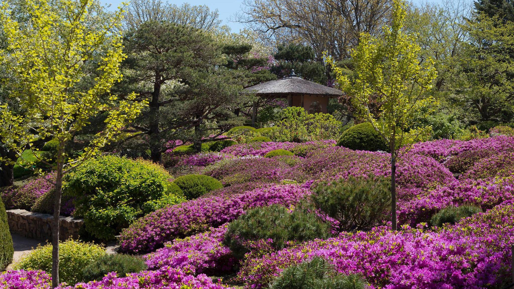 (Chicago Botanic Garden / Facebook)
