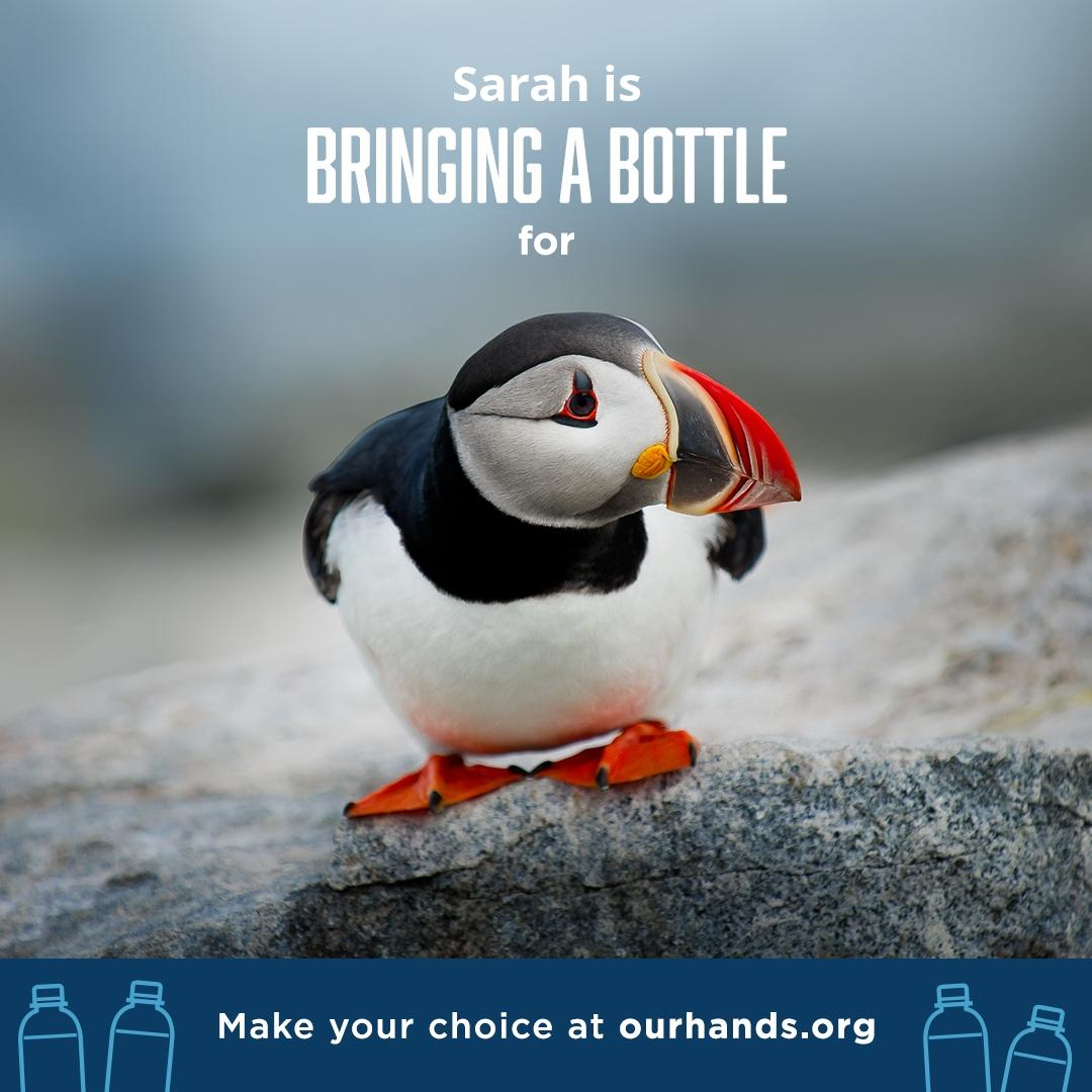 A new effort to reduce pollution encourages consumers to find alternatives to disposable plastic bottles. (Ourhands.org)