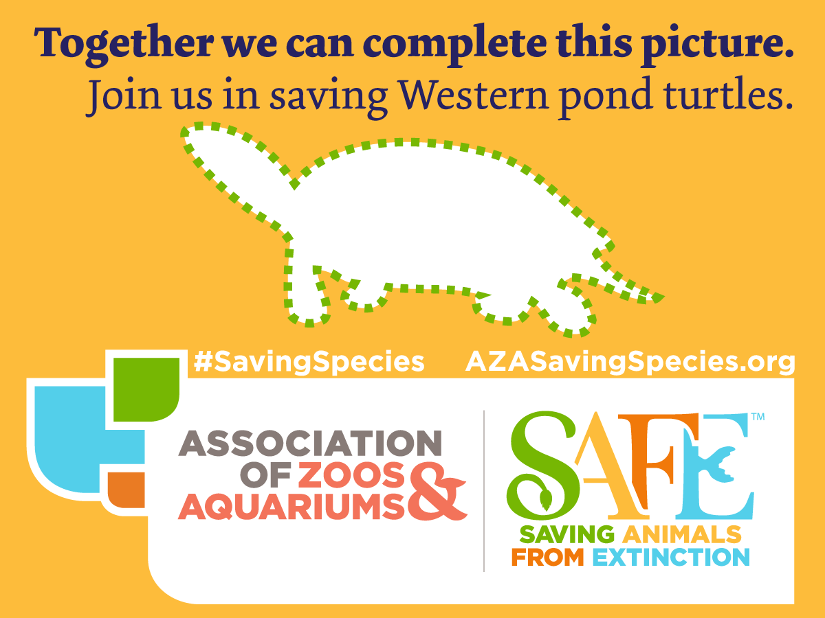 (Association of Zoos & Aquariums)